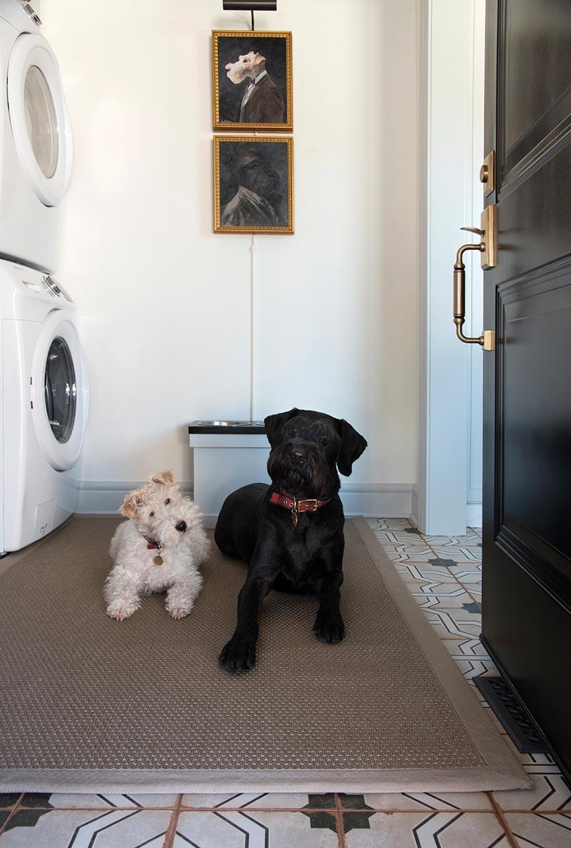 Bijkeuken washok huisdieren honden