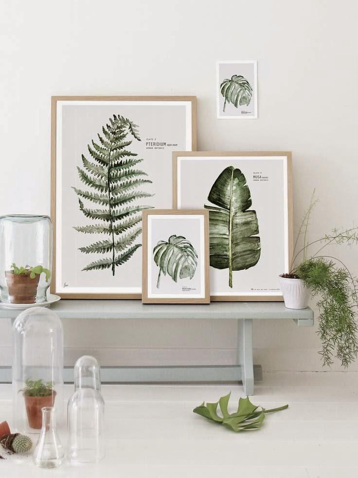botanische-posters