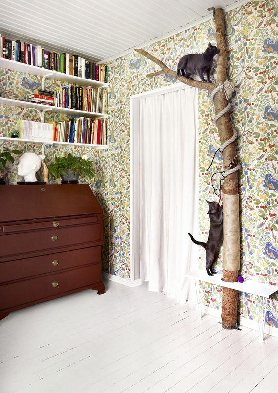 diervriendelijk en leuk interieur