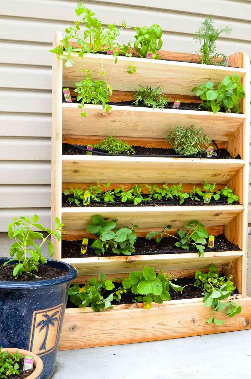 DIY Verticale tuin met druppelbewateringssysteem