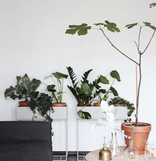 Ferm Living plantenbak