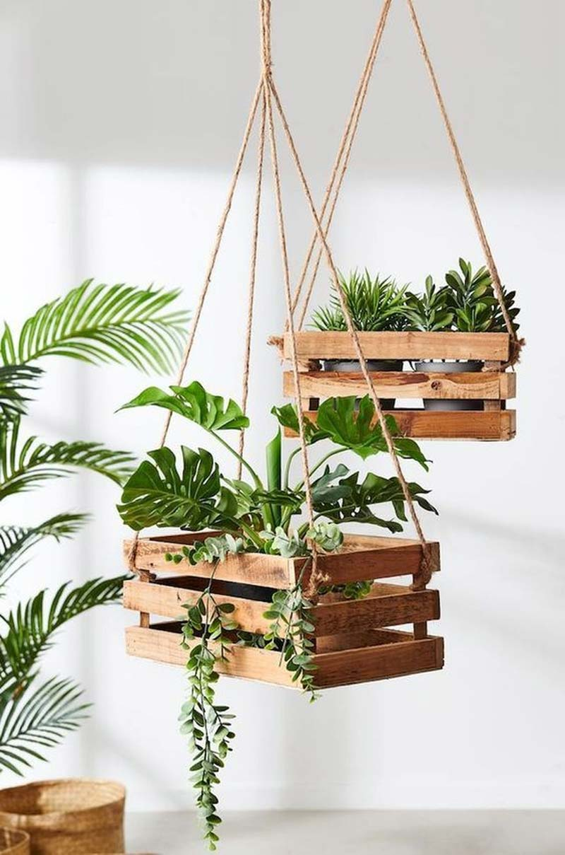 fruitkistjes plantenhanger