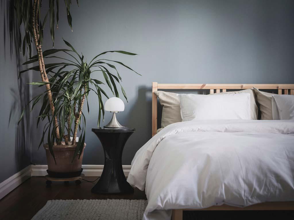 grote slaapkamer plant pot