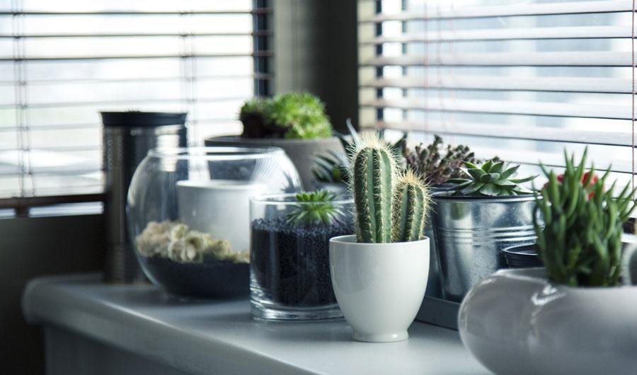 Inspiratietips én interieurtrends voor je woonkamer
