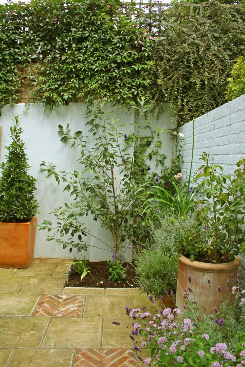 kleine tuin ontwerpen kleine romantische tuin planten