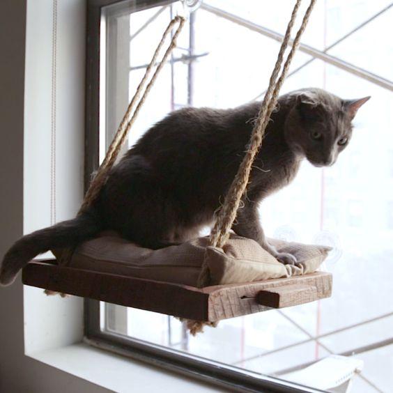 Loungeplek voor poes of kat