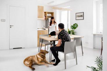 Modern appartement met underlayment interieur
