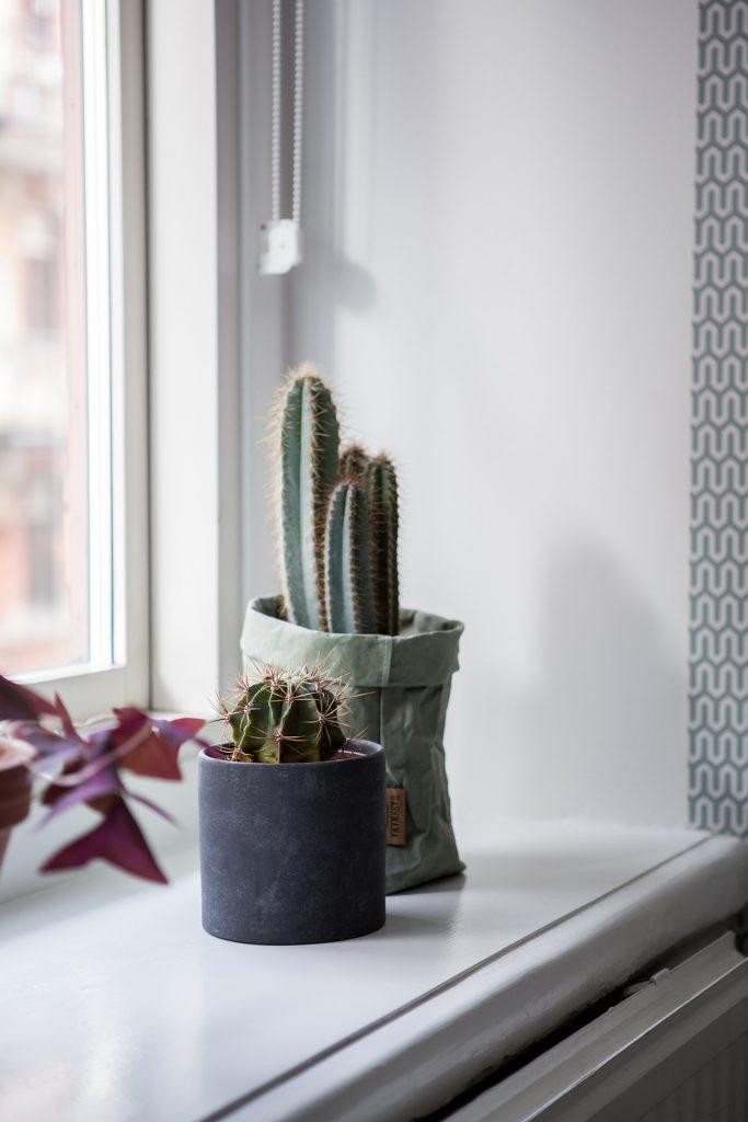 planten-vensterbank-slaapkamer