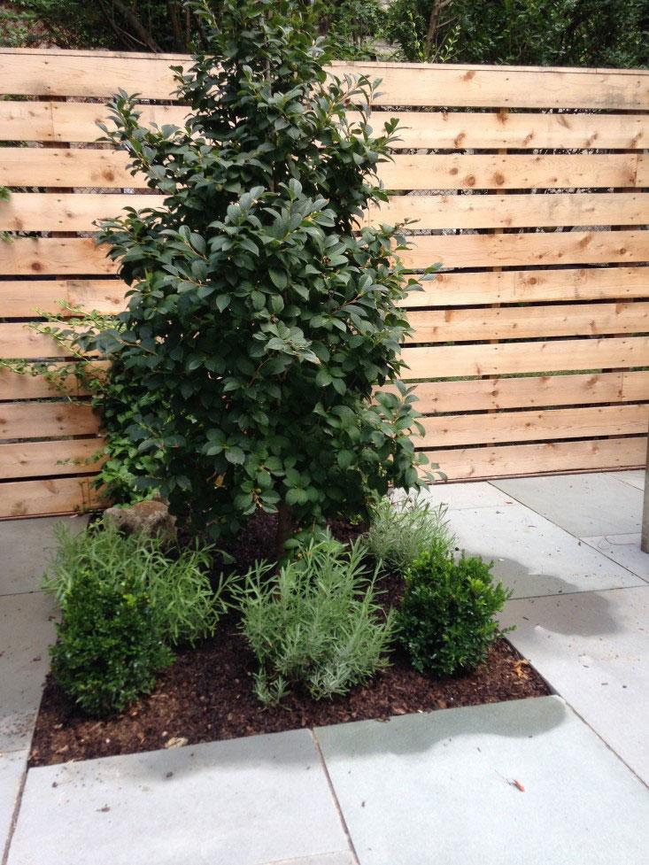 tuin ideeën plantenborder