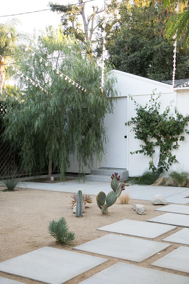 De tuin met woestijn thema van Molly