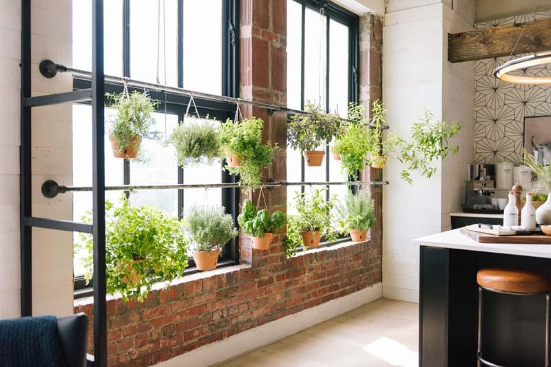 verse kruiden aan stang keuken raam