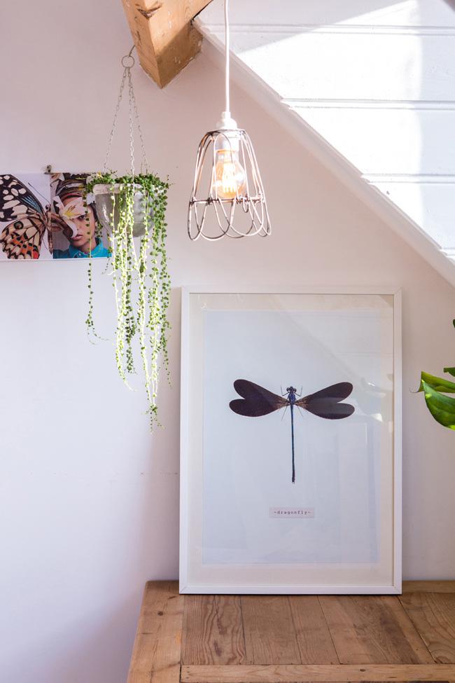 vlinder-poster